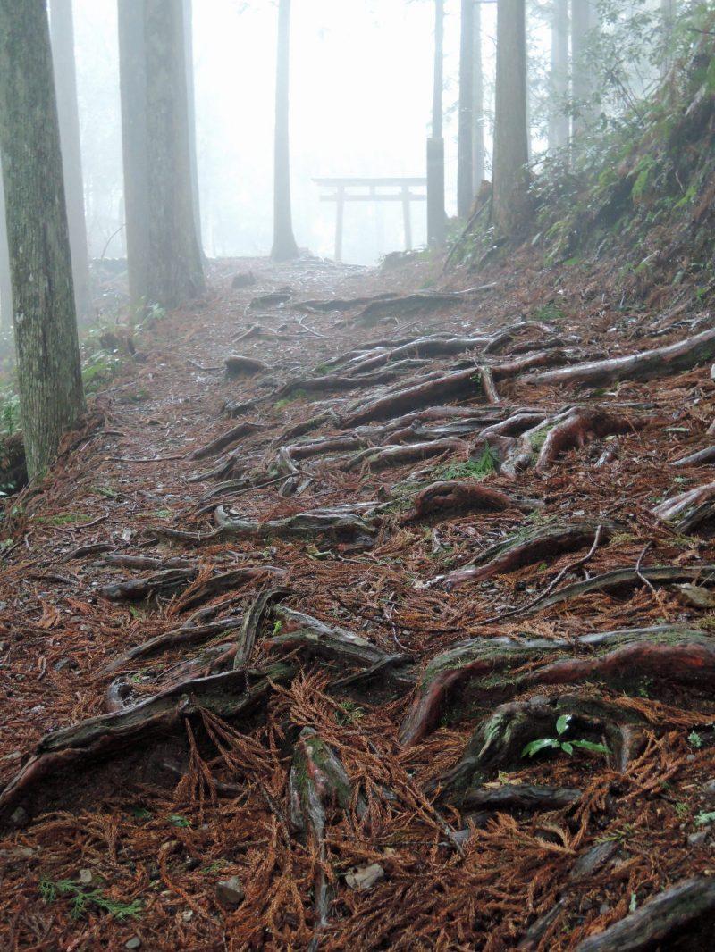 Hosshinmonoji Entrance