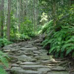 Matsumoto Pass along the Iseji