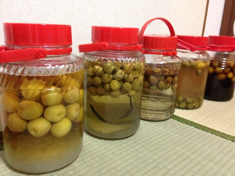 Making Plum Wine